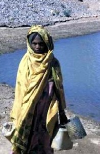 Eritrea's social revolution: a woman collects water from a dam built with international aid through the Eritrean Relief Association. Photo by Merrill Findlay, 1988.